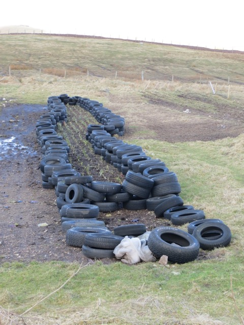 Using recycled tyres to protect crops
